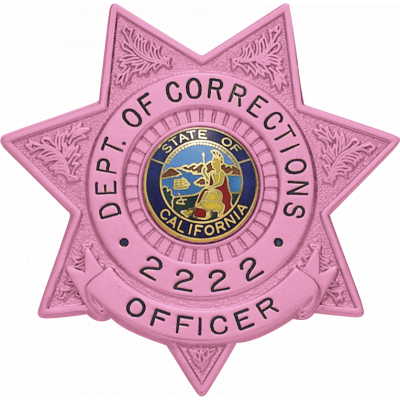 S243B 7-Point Star Badge in Pink Breast Cancer Awareness