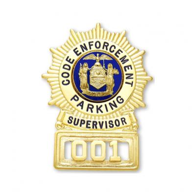 Code Enforcement Parking Supervisor