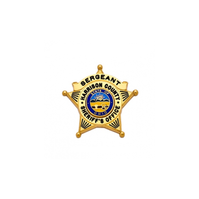 S597 Miniature 5-point star badge